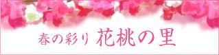 春の彩り 花桃の里